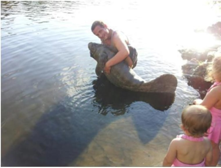 A man was arrested after posting photos on Facebook that showed him picking up a manatee.