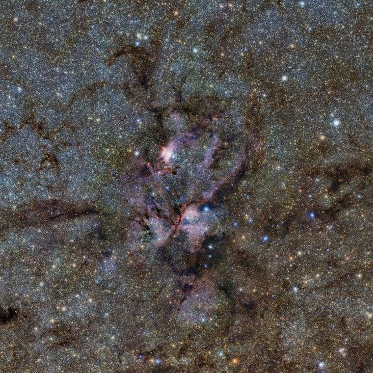A star-forming region of the Milky Way looks oddly like a