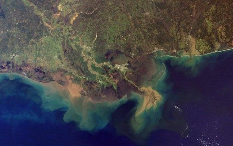 The Mississippi River carries roughly 500 million tons of sediment into the Gulf of Mexico each year.