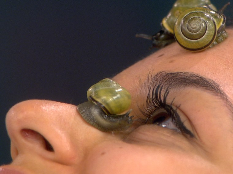 Live snails and the slime they leave behind are part of a new facial treatment offered by a Tokyo salon.