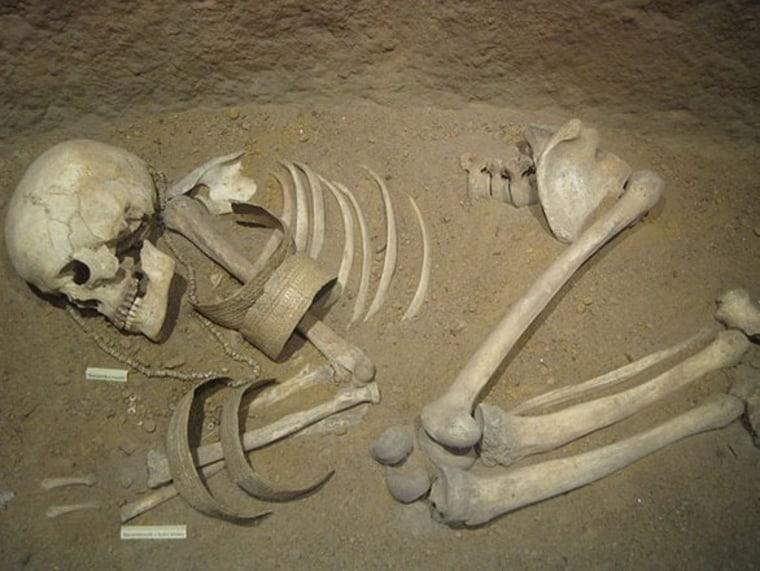 Image: Skeleton
