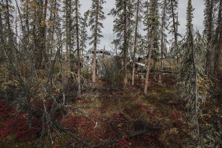 Alaska, 1965 crash