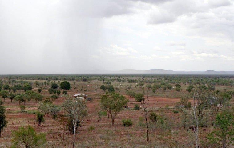 New research links gradual greening of arid areas like Australia's outback to increasing concentrations of atmospheric carbon dioxide.