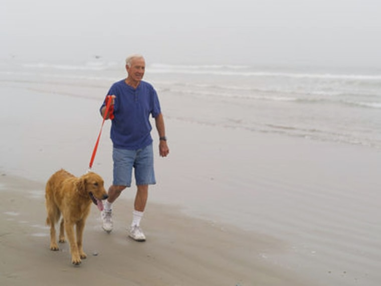 Senior man walking golden retriever on beach, exercise, retirement
