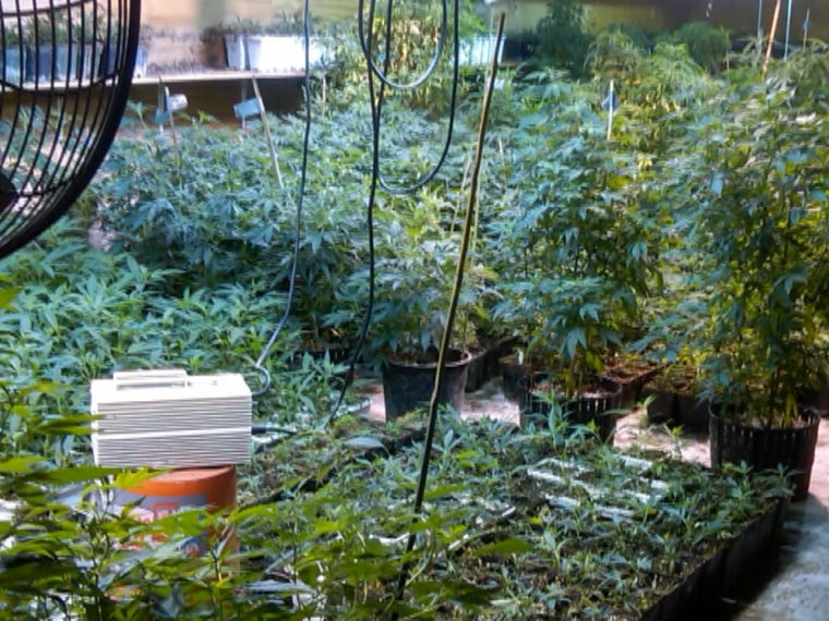 Scarsdale mom accused of running multimillion-dollar marijuana ring.