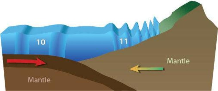 Tsunamis gain height as they approach the shore.