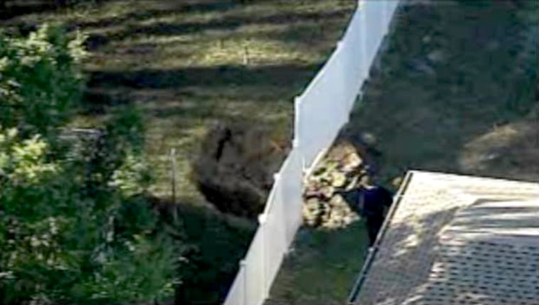 Seen here, the second sinkhole in Seffner showed up about two miles away from the first deadly one. No one was injured.