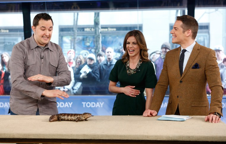 """TODAY -- Pictured: (l-r) Jeff Musial, Natalie Morales and Jason Kennedy appear on NBC News' """"Today"""" show -- (Photo by: Peter Kramer/NBC/NBC NewsWire)"""