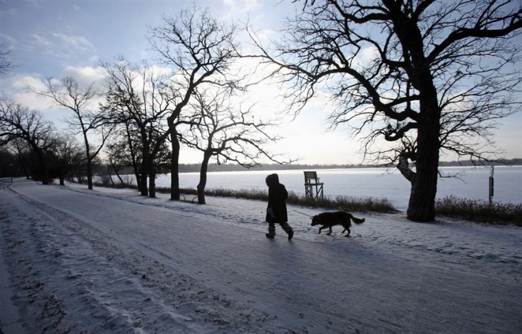 A woman walks her dog in Minneapolis. Indoor energy demands in the chilly city are higher than cooling demands in Miami, according to a new study.