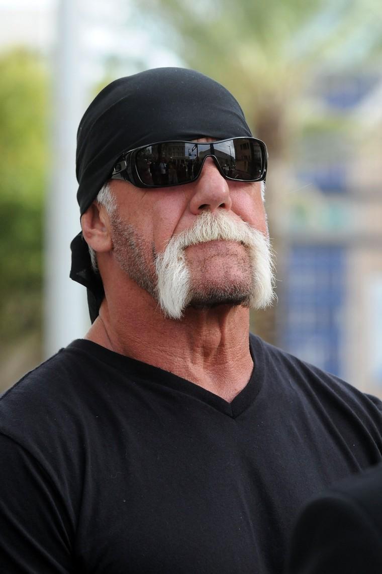 "Terry ""Hulk Hogan"" Bollea."