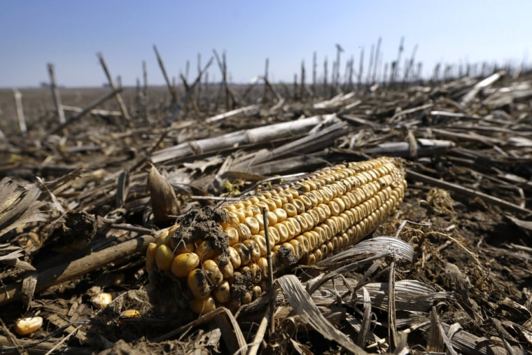 Food supply under assault as climate heats up