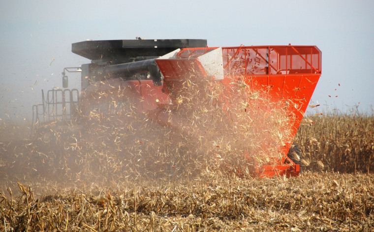 Image: A combine hitched with a Cob Caddy gathers corn and cobs while blowing stover back into the field on a farm near Hurley, S.D. in this Oct. ...