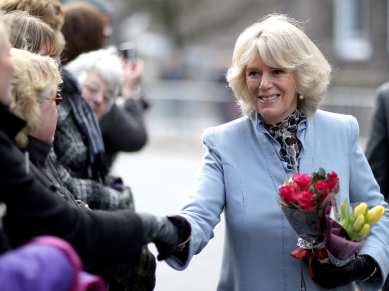 Camilla, Duchess of Cornwall (pictured in 2010), has come a long way in the public eye from the days when she was known as Prince Charles's mistress.
