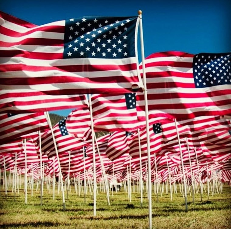 Image: Flags for Veterans Day