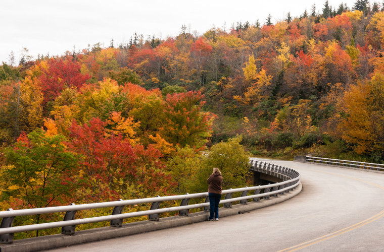 A woman stops to take a photo of the fall foliage Oct. 17, 2013, along the bridge over Green Mountain Creek on the Blue Ridge Parkway near Grandfather Mountain in Linville, N.C.