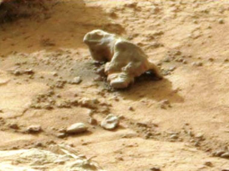 Image: Martian iguana