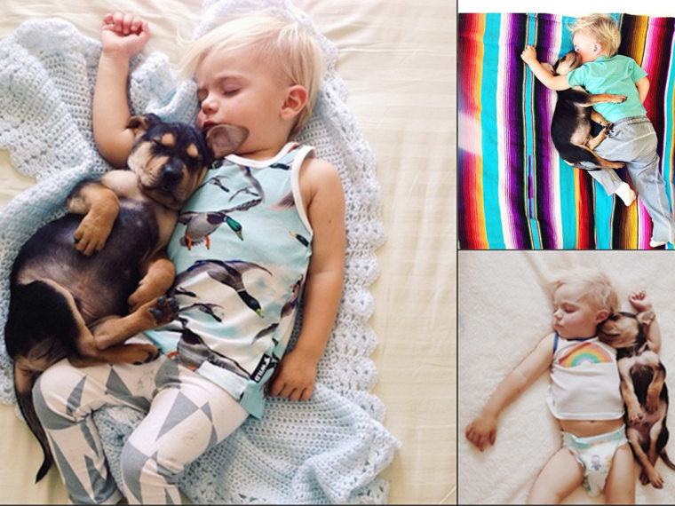 Jessica Sheeba posts adorable photos of her 23-month-old son, Beau napping with the family's new puppy, Theo.