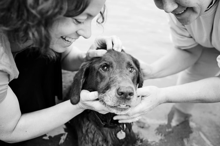 """The """"Joy Sessions"""" let the owners share their favorite quirks and stories about their ailing pets while celebrating their final days."""
