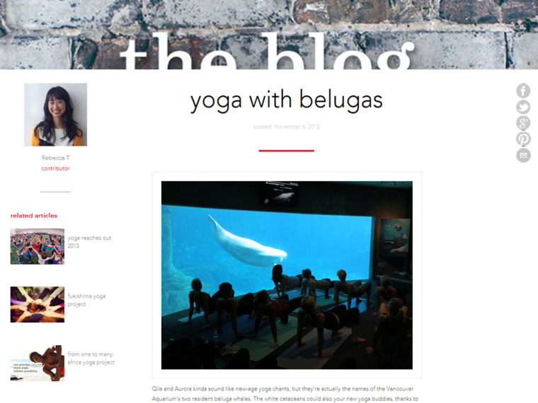 The Vancouver Aquarium's decision to offer yoga sessions alongside its beluga whale exhibit has come under protest by members of the local yoga community.