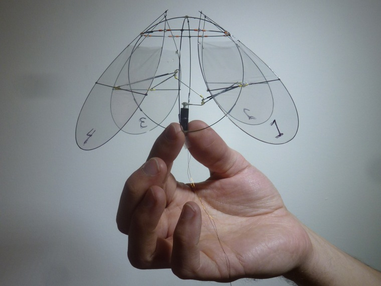 The four-winged robot built at NYU mimics the movements of a jellyfish to efficiently stay aloft.