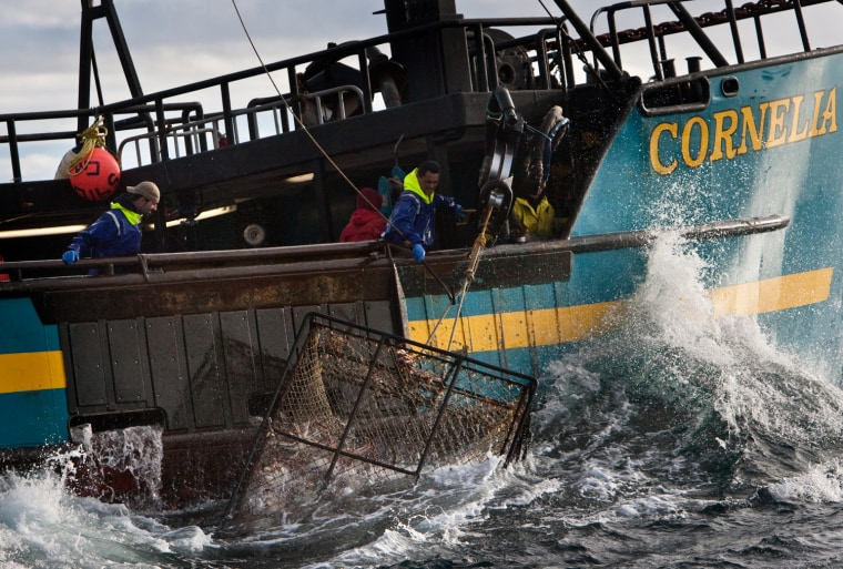 The red king crab fishery finally got fully under way Friday after the government shutdown ended and permits could be processed. Crews like the one seen in this file photo of the Cornelia Marie were eager to get to work.