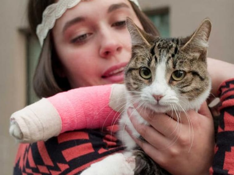 Image: Stephanie Gustafson holds her 2-year-old female cat, Wasabi