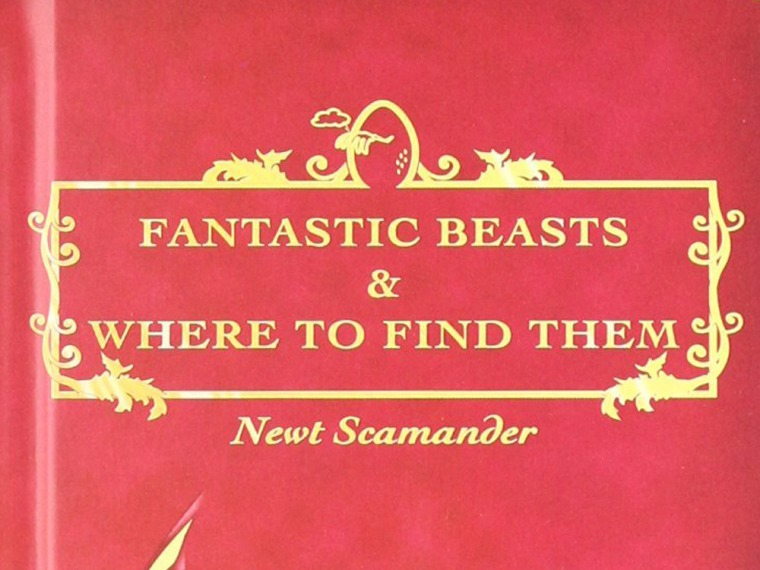 """Image: \""""Fantastic Beasts and Where to Find Them\"""""""