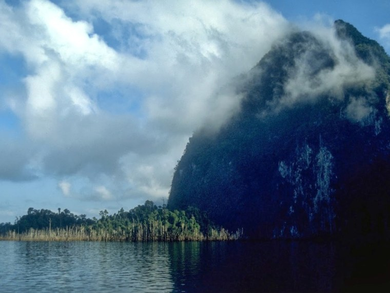 The Chiew Lam Reservoir is surrounded by rainforest, and dotted with more than a hundred forested islands.