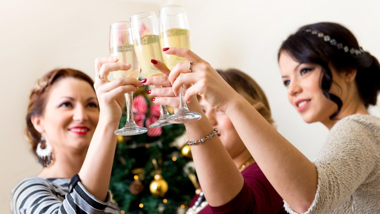 women, woman, toast, party, christmas. toast, champagne, celebrate, holiday