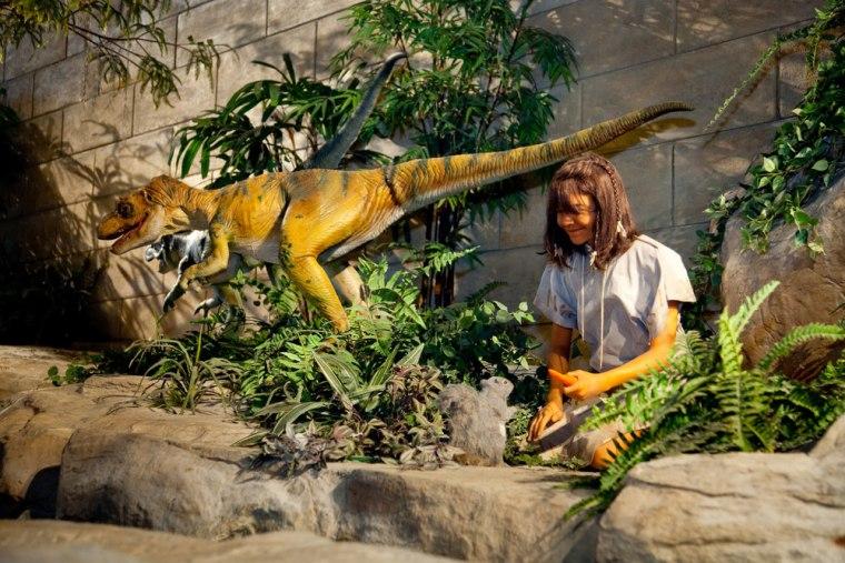 Image: Display at Creation Museum