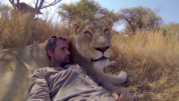 Kevin Richardson with lion.