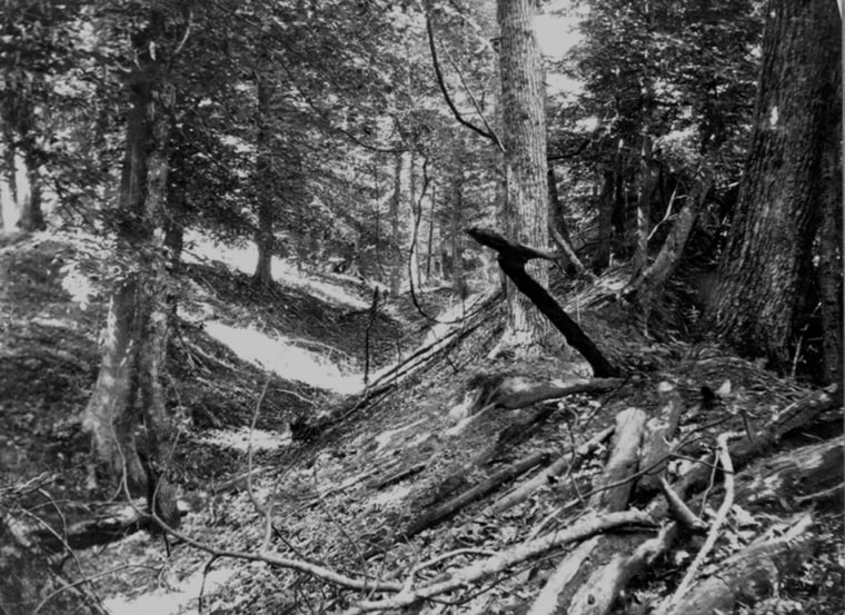 Image: Landslide trench and ridge in Tennessee made by New Madrid earthquakes in early 1800s...