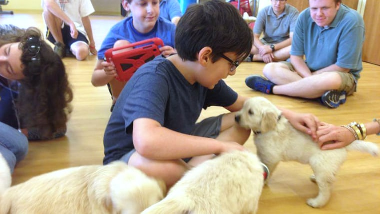 Lionheart students play with puppies.