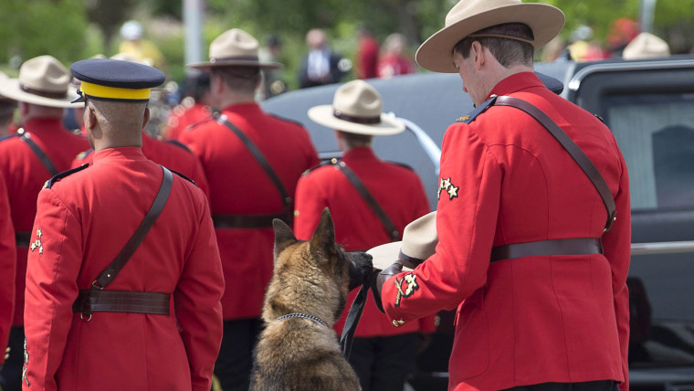 Royal Canadian Mounted Police dog Danny sniffs the Stetson of his partner, slain Constable David Ross, during the funeral procession for the three RCM...