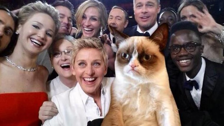 Ellen's Oscar selfie keeps Internet busy as Grumpy Cat, others go meme crazy