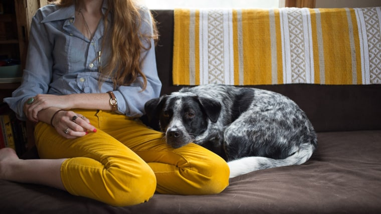 Millie, a blue heeler border collie mix, cuddles up to Rachel on the couch. The two live with John and their cat Cheeto, who John rescued after Hurric...