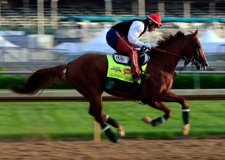 Kentucky Derby contender California Chrome is ridden by exercise rider William Delgado on the track during early morning workouts at Churchill Downs on May 1, 2014, in Louisville, Kentucky.