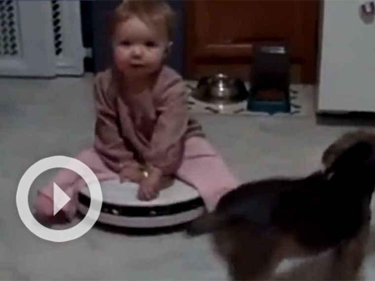 Babies on Roombas: Endless and Practical Fun!