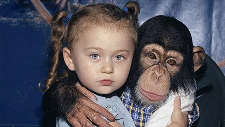 Image: Young girl, Amelia, hugging a chimpanzee