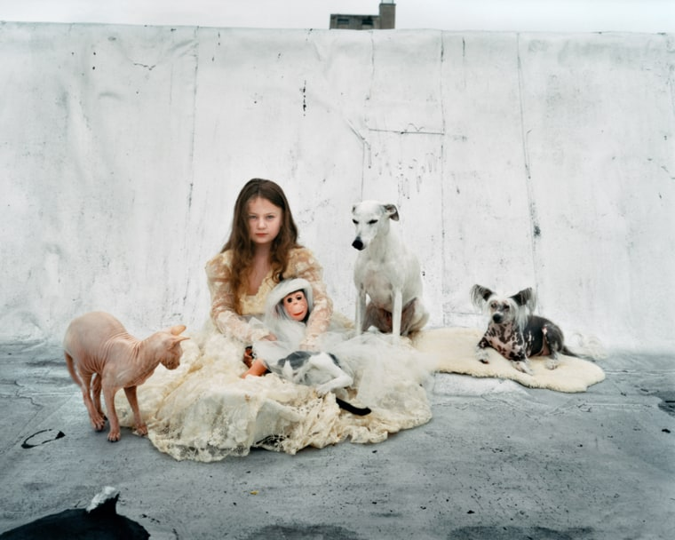 Image: A young girl in a dress surrounded by animals