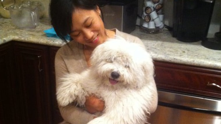 Priscilla Chan with her dog Beast.