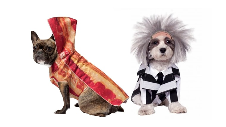 Image: Dogs in Halloween costumes