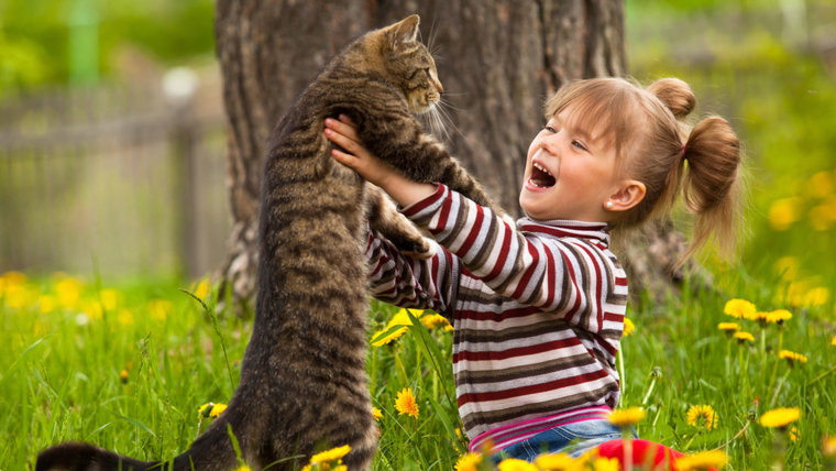 Kid playing with a cat; Shutterstock ID 111593129; PO: today.com