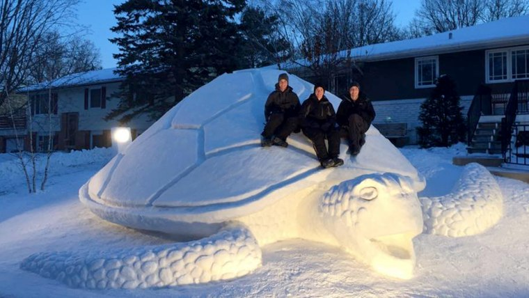 Image: The Bartz brothers show off their snow turtle
