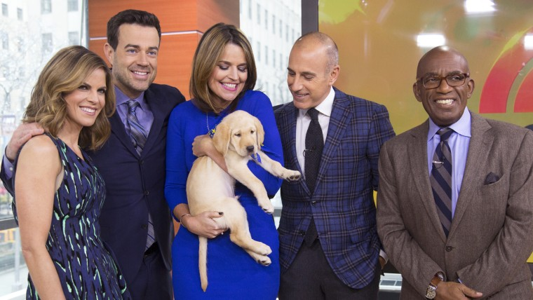 "TODAY Show: The TODAY anchors meet their new ""puppy with a purpose"" on January 14, 2015."