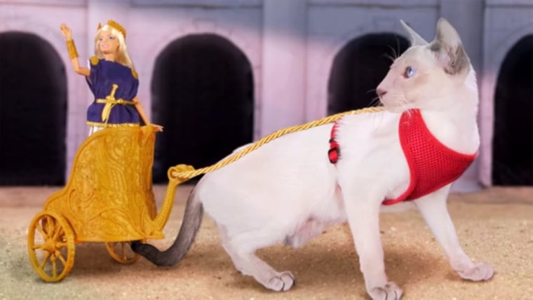 This Kickstarter campaign is raising money for a 3D-printed Barbie-compatible Roman chariot ... that can be pulled by your cat.