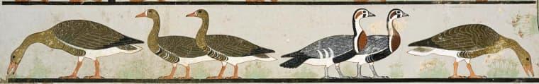 """Image: """"Meidum Geese"""" painting"""