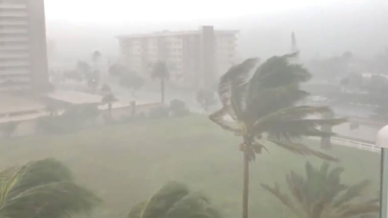 Image: Trees sway as Storm Gordon descends on Fort Lauderdale, Florida, U.S.