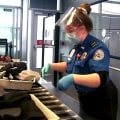 Summer travel surge leaves TSA and airports scrambling