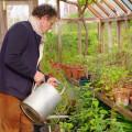 British gardener becomes international star during pandemic